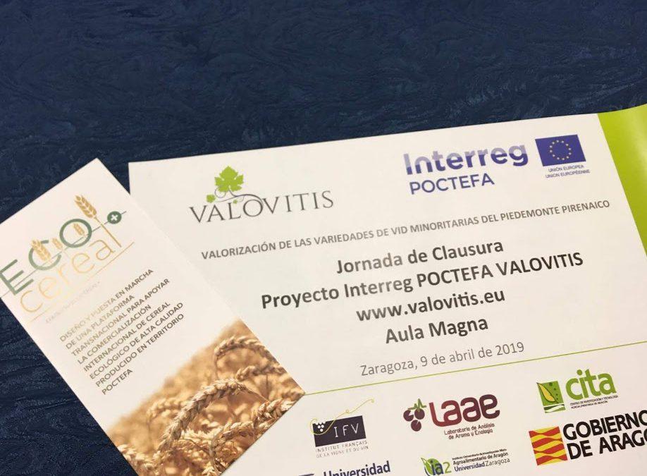 Jornada final del proyecto POCTEFA VALOVITIS